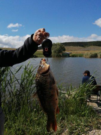 Рыбалка на поплавок в Крыму